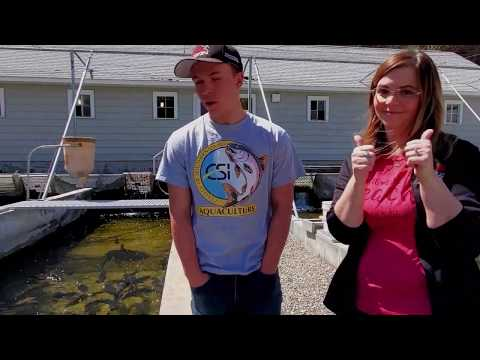 Virtual College Of Southern Idaho Fish Hatchery Tour | Trout, Strugeon, And Tilapia