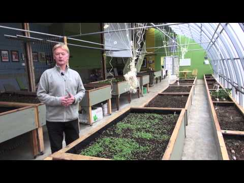73.-passive-solar-greenhouse:-a-way-to-produce-more-local-food-and-use-less-energy-to-do-it