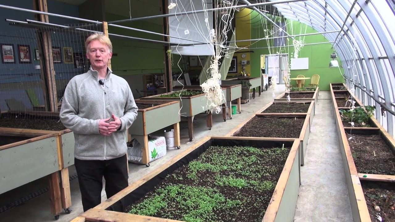 73 Passive Solar Greenhouse A Way To Produce More Local