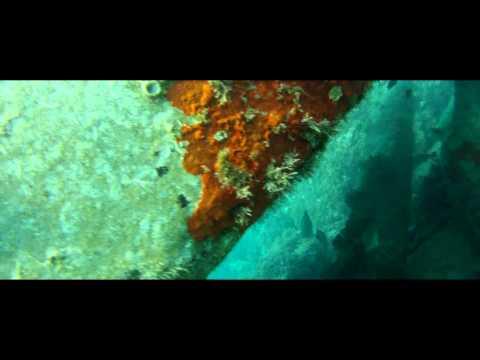 Ruines antiques sous-marines