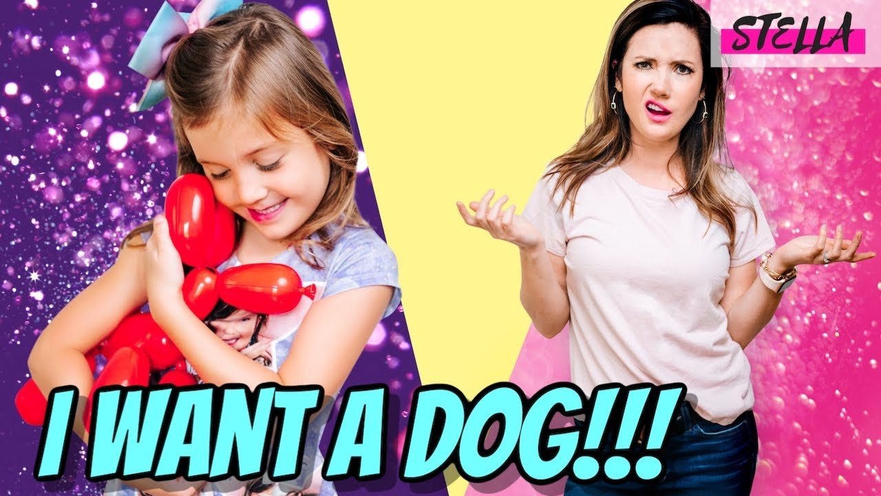 Stella Wants a Dog!!! (Featuring Squeakee Dog)
