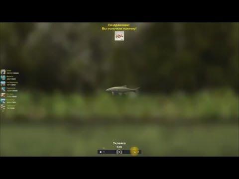 Уклейка, ловля уклейки, мини турнир между командами, в игре, Трофейная рыбалка 2