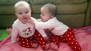 twins babies are funny