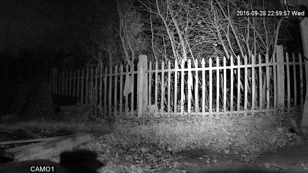 Infrared Flashlight / Инфракрасный фонарик - YouTube