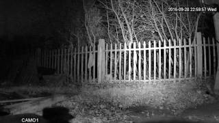 инфракрасные светодиодные прожекторы для видеонаблюдения