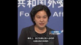 """中美经贸磋商 华春莹:""""自己生病让别人去吃药""""是没用的"""