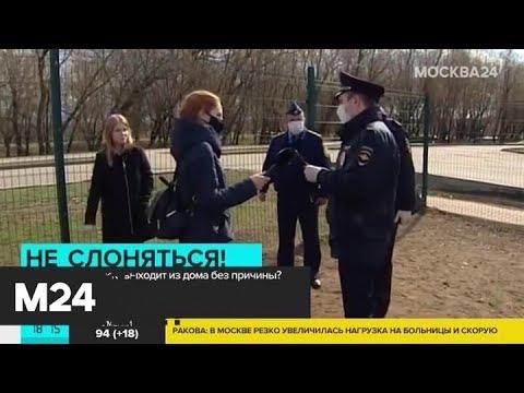 Что грозит тем, кто выходит из дома без причины - Москва 24