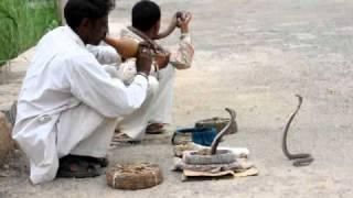 Gambar cover Cobras de camino a Agra