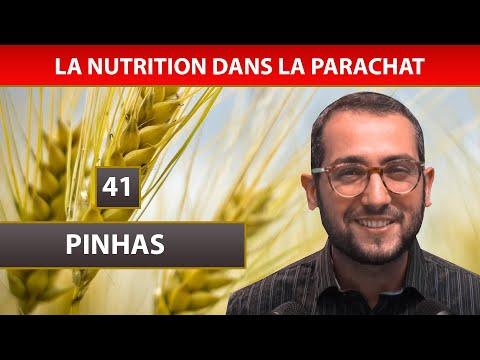 NUTRITION DANS LA PARACHAT 18 - PINHAS 41 - Shalom Fitoussi