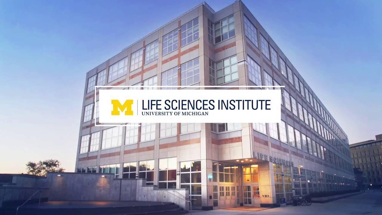 The University Of Michigan Life Sciences Institute