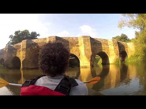 River Arun Kayak Pulborough to Pallingham Quay (HQ)