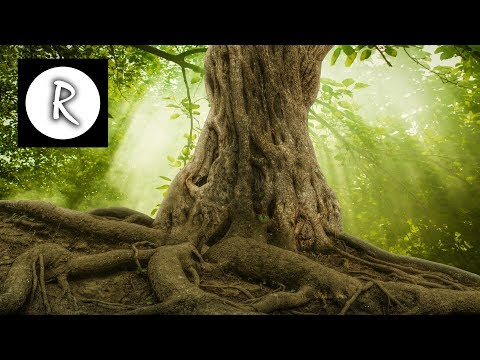Relaxing Celtic Music: Relaxing Music, Flute Music, Harp Music, Oboe Music