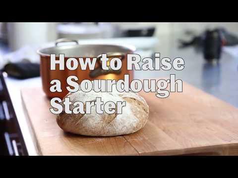 How to Raise a Sourdough Starter