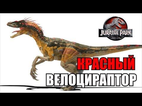 Вопрос: Скелет какого динозавра нашли в начале фильма Парк юрского периода?