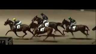 Eidelstedter Rennen 2012_ PMU Rennen_Trabreiten_At Full Speed 1:17,2_Michelle Kokkes