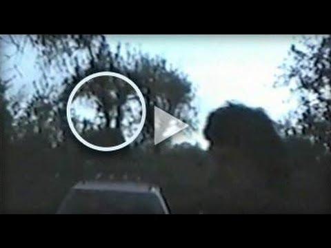 Baby Bigfoot Swings From Tree Limb? | Finding Bigfoot