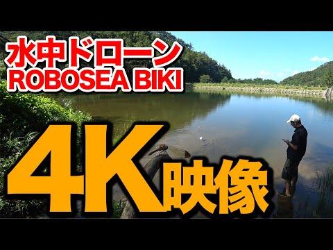 【 水中ドローン】水中ドローンで4K映像撮ってみた ROBOSEA BIKI 2019.10.8