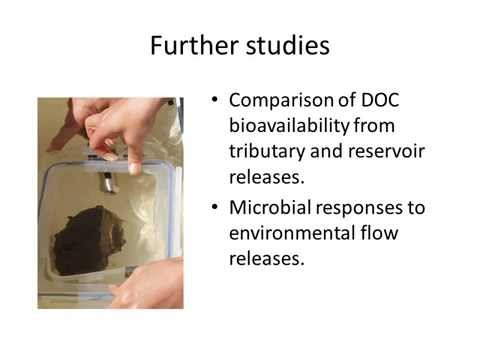 Can tributary flows improve dissolved organic carbon delivery to a regulated snowmelt river?