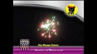 Black Cat Fireworks - Firework Range 2006 - 1/4