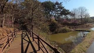 [태안 만리포 천리포 0405] 윈드서핑, 패들보드, …