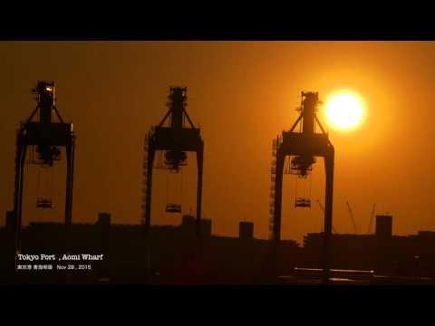 Tokyo Port Aomi Wharf - 青海埠頭 -  [4K]