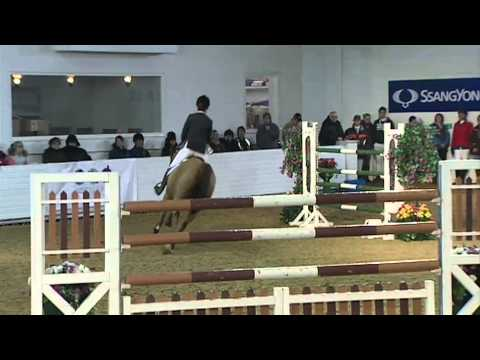 Showjumping - Welcome to Yorkshire Jump - March 2011