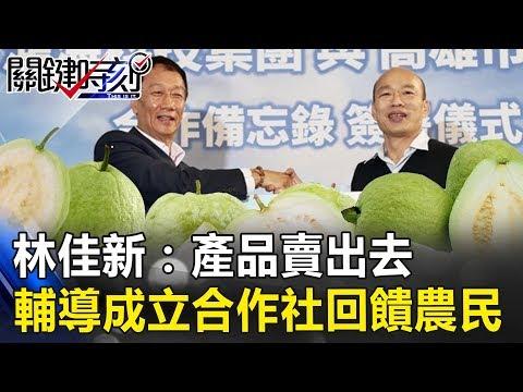 林:「產品賣出去」 輔導在地農民成立合作社 可以直接回饋農民!! 關鍵時刻20190321-5 林佳新 郭秀珠