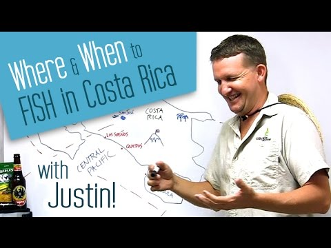 Sportsfishing In Costa Rica: Where & When To Fish? Insider Secrets With Justin