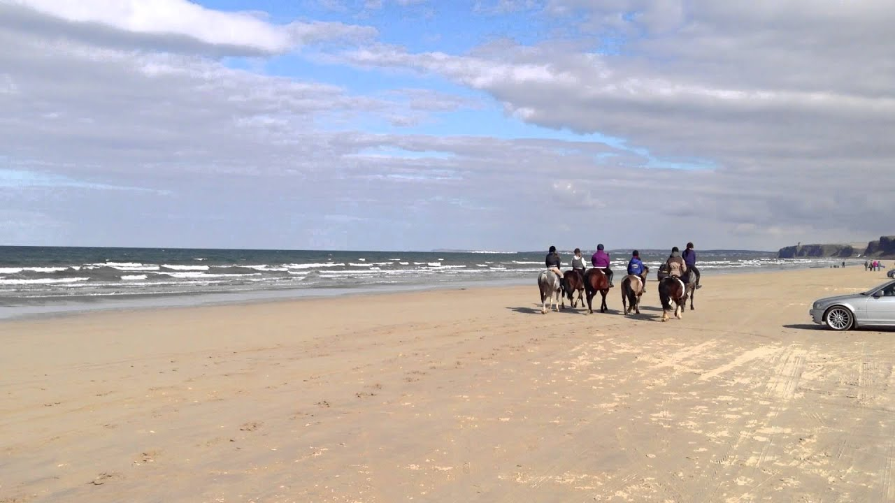 Horses On Benone Beach Northern Ireland