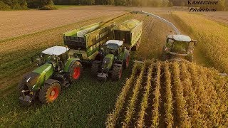 Mais 2019 : LU Jumpers / Claas Jaguar 990 & 980 / Fendt 936 / USA / Bergmann