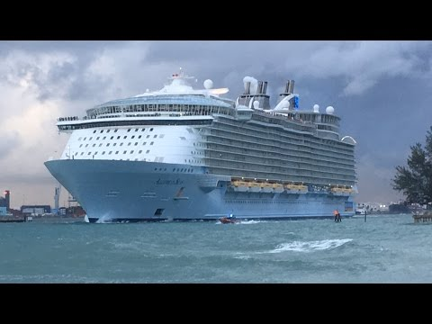 Port Everglades Ship Spotting December 11th, 2016