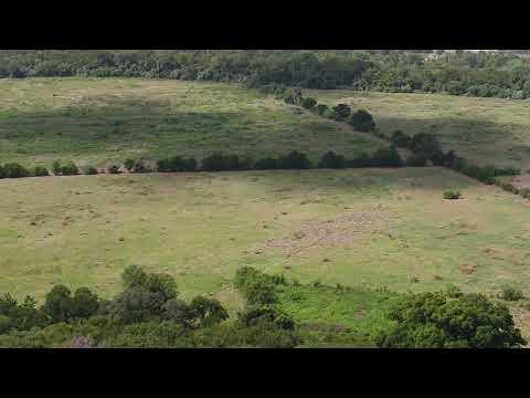John Treviño Jr. Metro Park drone footage