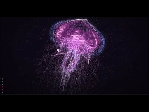 Creatures of Light Underwater - Best Documentary 2018  [1080p] NEW