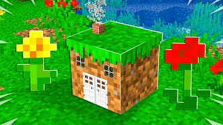 I Built the World's SMALLEST Minecraft House! *tiny*