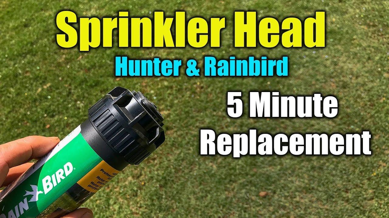Replace Sprinkler Head Rainbird And Hunter You