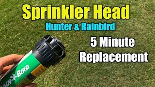 Replace Sprinkler Head - RainBird and Hunter