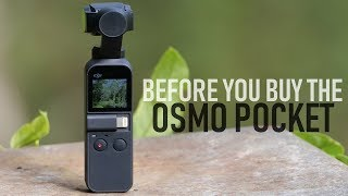 Before You Buy The Osmo Pocket | What To Know Review | DansTube.TV