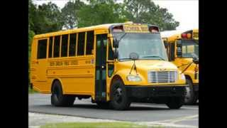 South Carolina Public Schools Buses