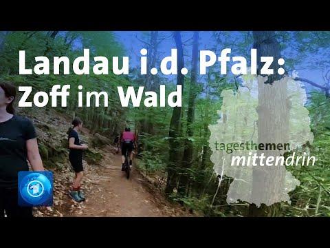 Download Landau in der Pfalz: Zoff im Wald