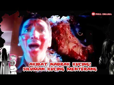 AKIBAT MENABRAK KUCING DIJALAN - SILUMAN KUCING HITAM   AZAB SPESIAL