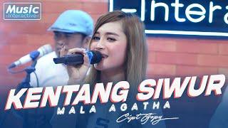 Download lagu Mala Agatha - Kentang Siwur