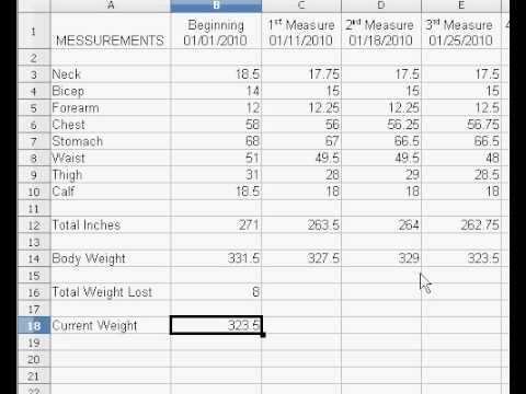 My Weight Loss Spreadsheet - YouTube - weightloss spreadsheet