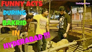 Hyderabadi Bakrid l Funny Acts l The Baigan Vines