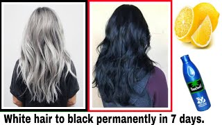 ( Bengali) White hair to black permanently in 7 days naturally
