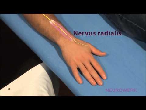 buy Die Behandlung der Rheumatoiden Arthritis mit D Penicillamin: Symposion mit internationaler Beteiligung Berlin,