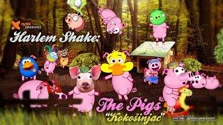 Repeat youtube video Harlem Shake The Pigs (2013) - Kokošinjac (Chicken Coop)