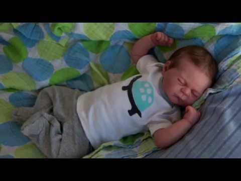 Morning Routine Baby Reborn Doll Julien Funnydog Tv