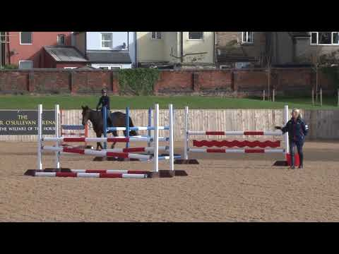 British Showjumping Training - Stepping up to Newcomers Part 3 Introducing fences