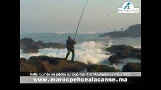 Journée de pêche au loup-bar à Mohammedia (Rais AZIZ)