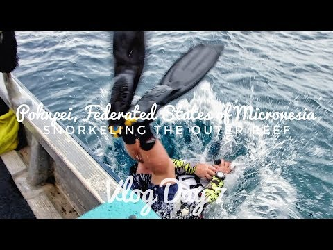 Snorkeling the Outer Reef of Pohnpei, Micronesia | Vlog Day 7